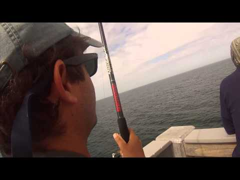 king Mackerel Panama City Beach Pier 2013