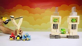 DIY Real Life Angry Birds