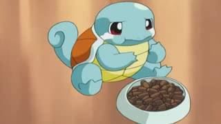 Pokemon : Squirtle being cute with Max and May