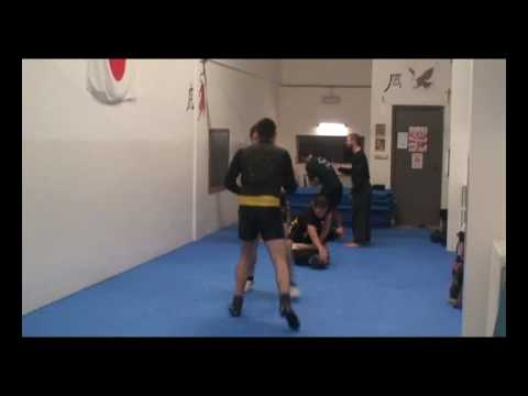 Chinese sanshou techniques-complete fighting method (part one) Image 1