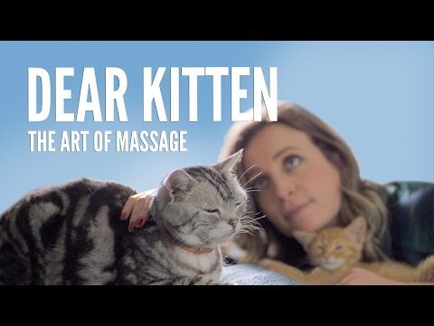Dear Kitten: The Art Of Massage