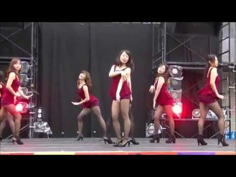 Like a Cat(AOA) dance cover by Klassy from STEP【東大駒場祭2015】