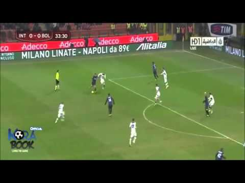 Fredy Guarin El Guaro 2012/2013 HD