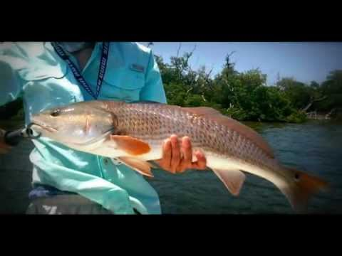 Pine Island Sound Redfishing