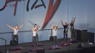 ProFi Fitness Team  Functional Step