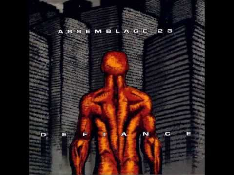 Assemblage 23 - Document (lyrics)