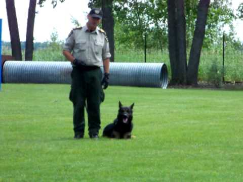 Police Dog Service Training Centre