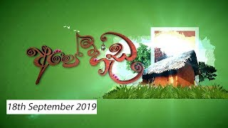 Ape Heda |18th September 2019