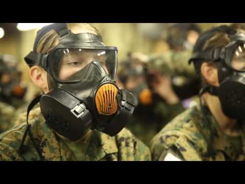 Revealed Army scientists secretly sprayed St Louis with
