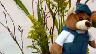 Regalos y Flores a Ecuador