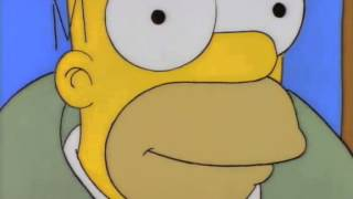 Homer - Its a Pornography Store