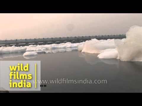 Yamuna: one of the most polluted rivers