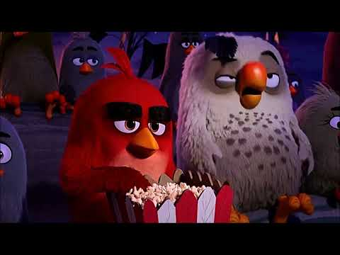 The Angry Birds Movie (2016) Scene: 'Red'/Opening Titles