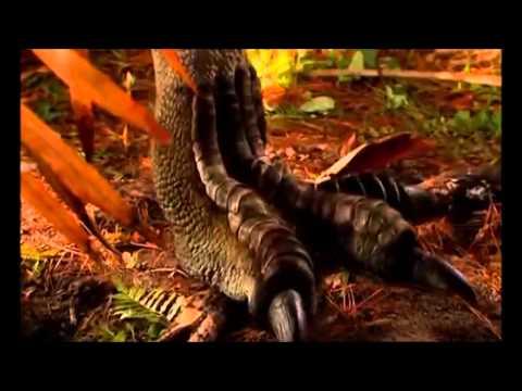 Jurassic Park (Ohana/Misfit Style) trailer