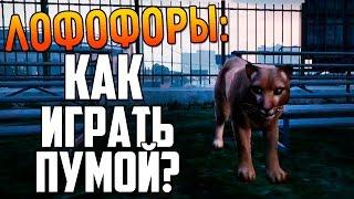 GTA 5 - Как Играть За Пуму? ЛОФОФОРЫ #3