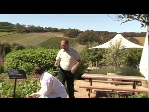 Montalto Vineyard And Olive Grove Thumbnail