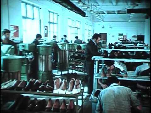 Фитиль, выпуск № 116 (1972) смотреть онлайн