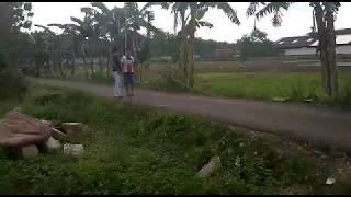 Video Lucu Ngintip Orang Mesum