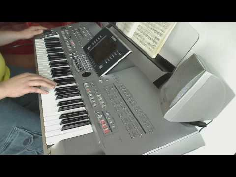 The Eagles - Hotel California (Yamaha Tyros 3 live)