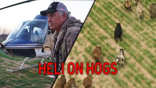 Prepping for a Helicopter Hog Hunt | VLOG