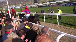 Sprinter sacre 2013 queen mother