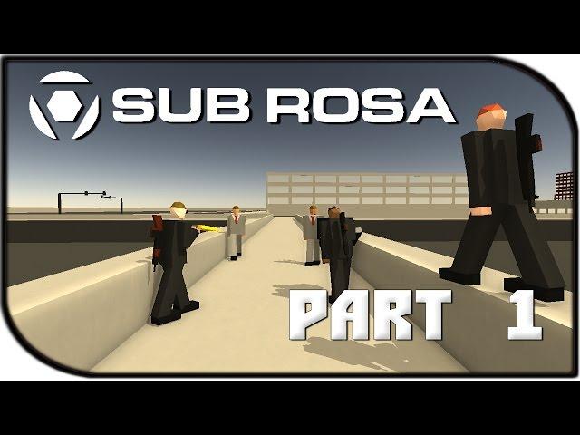 Руководство запуска: Sub Rosa по сети