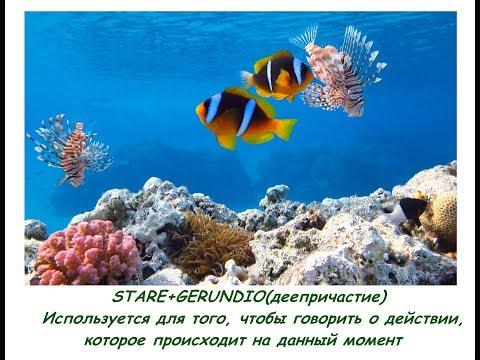 stare+gerundio( деепричастие), примеры предложений русский итальянский, esempi frasi russo italiano