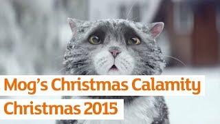猫のクリスマスの出来事♪イギリスのスーパーのハイクオリティ過ぎる広告