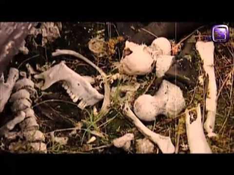 Якутские ойуны. Из цикла Колдуны мира. 2012