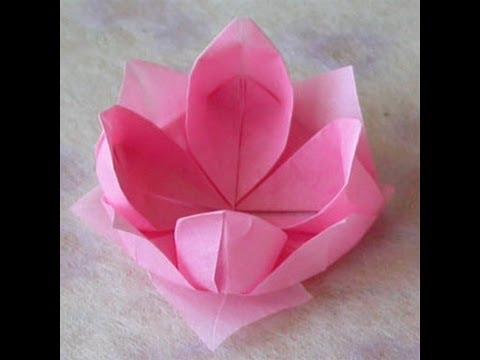 طريقة عمل كأس زهرة اللوتس من الورق عن طريق ف�