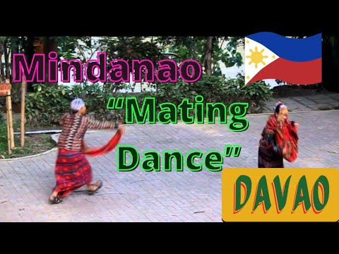 """Mating Dance"" at Mindanao Cultural Village, Davao, the Philippines"