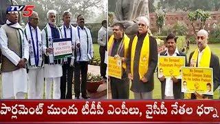 టీడీపీ ఎంపీలు వైసీపీ నేతల ధర్నా | TDP MPs and YCP Leaders Protests For Special Statue