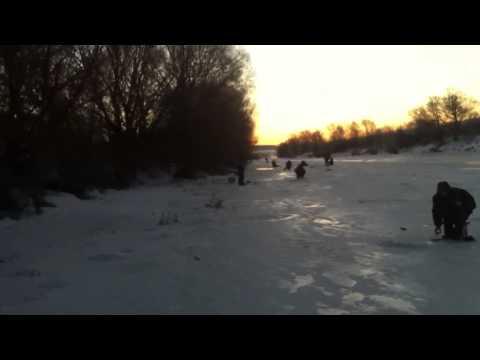 рыбалка в белевском районе