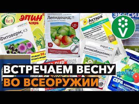 Выбираем препараты для опрыскивания плодового сада – ликбез от специалиста
