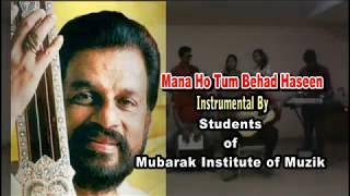 Mana HoTum Behad Haseen instrumental mandolin