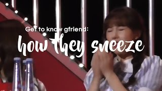 Get to know GFRIEND: how they sneeze
