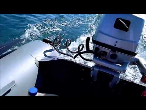лодочный мотор liman f5s
