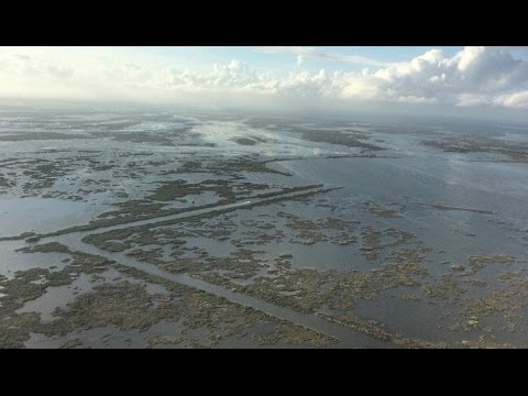 The Consequences Of Louisiana's Vanishing Coastline - Alice Ollstein Discusses