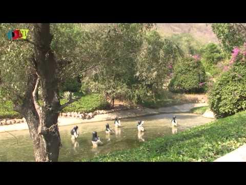 Jaipur Heritage Tour/ Jaipur Tourism (Kanak Vrindavan Valley) Rajasthan, India by Rooms and Menus