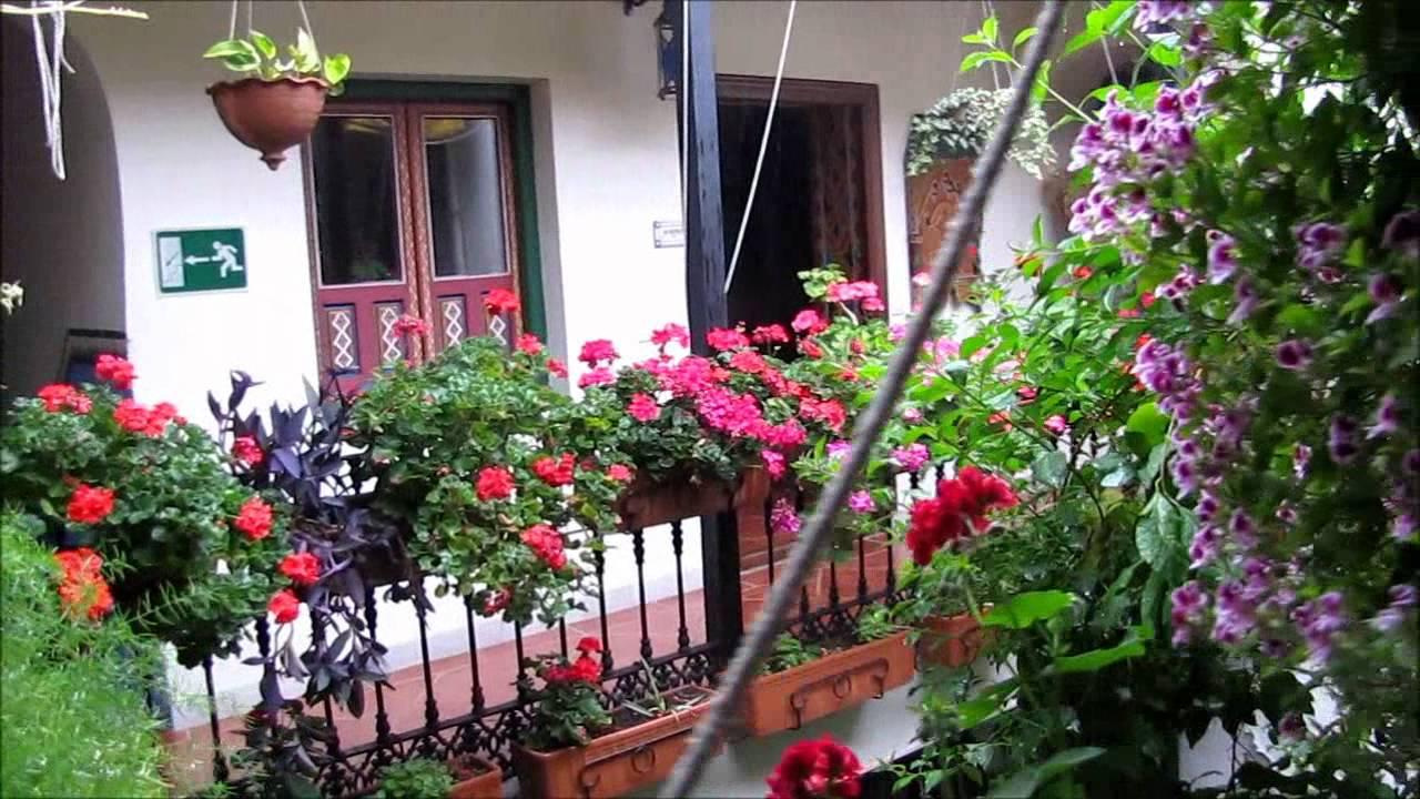 Patios oasis dentro de casa luna de cristal youtube for Jardines pequenos para la casa