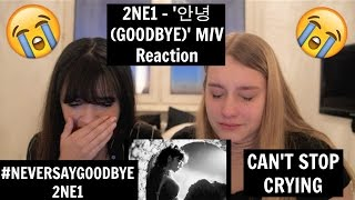 2NE1 - '안녕 (GOODBYE)' M/V Reaction | [THE TEARS WONT STOP]