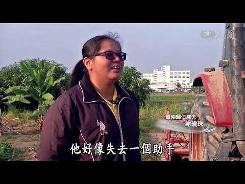 台綜-農夫與他的田-20190322 農村文化復興農村
