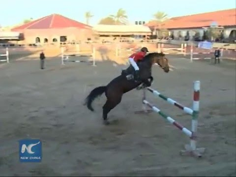 First horse-riding championship held in Gaza strip