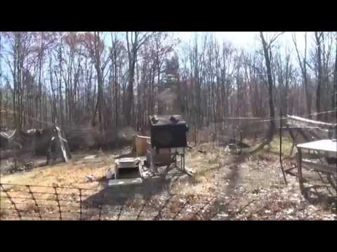 Sunny Off Grid Day At The Homestead With Many Things Happening video