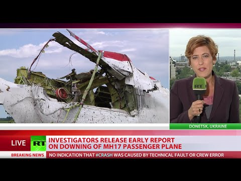 MH17 penetrated from outside by hi-energy objects, broke up mid-air - probe