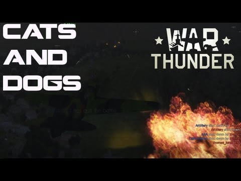 War Thunder Squadron - Cats and Dogs