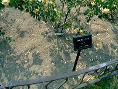 東山動植物園2