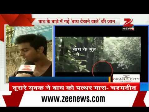 Delhi Zoo tragedy: Onlookers narrate the tragic tale