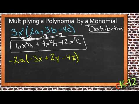 Multiplying a Polynomial by a Monomial: A Sample Application