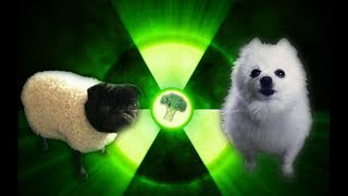 download musica Imagine Doggos - Radioactive